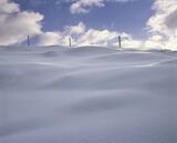 Out Of Bounds, Rhidarroch, Inverpolly, Scotland, winter, beautiful, simplistic, strong, sunlight, waves, gentle, fence,  photo