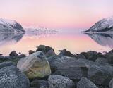 Pink Dawn Bergsbotn, Bergsbotn, Senja, Norway, sumptuous, pink, sunrise, boulder, snow, sea, rock, ethereal, beauty  photo