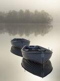 Platinum Rusky, Loch Rusky, Trossachs, Scotland, sunrise, platinum, evocative, contrasty, colour, definition, floating,
