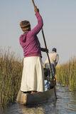 Poling Okavango Delta, Okavango Delta, Botswana, Africa, dugout, canoe, sunrise, narrow, passages, reeds  photo