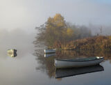 Quiet Corner Rusky, Loch Rusky, Trossachs, Scotland, pleasant, autumnal, misty, gentle, flanl, illuminated, row boat, su photo
