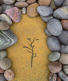 Life Will Find A Way, Cummingston, Moray, Scotland, beautiful, stones, depressions, scoops, bedrock, seaweed, frond photo
