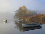 Secluded Mooring Rusky, Loch Rusky, Trossachs, Scotland, charming, secluded, loch, defined, colourful, ephemeral, shroud photo