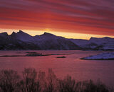 Senja Sunrise, Hamn, Senja, Norway, remarkable, blood, red, mountain, silhouetted, trees, reflected, pillar, crystals, s photo