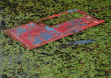 Shed Door, Blairs Loch, Moray, Scotland, discarded, door, boat, shed, red, blue, rhodedendron, leaves, green, colourful photo