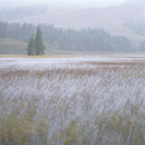 Skye Squall Square, Loch Cill, Skye, Scotland, beautiful, impression, pouring, wind, whipped, reeds, bleak, lyrical photo