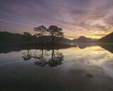 Slattadale Island Sunrise, Slattadale, Torridon, Scotland, gorgeous, sunrise, pine island, Loch Maree, peace, tranquilit photo
