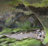 Smugglers Cove, Cove Bay, Moray, Scotland, beach, hiding, green, seaweed, sandstone, cave, treasure, pebbles, emerald photo