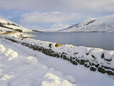 Snow Blanket, Loch a Chroisg, Achnasheen, Scotland, deep, fresh, pure, snow, sparkling, sunlight, reflective, winter, sc photo