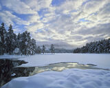 Snow Mallow, Loch An Eilein, Cairngorm, Scotland, deep, pillows, snow, fluffy, white, blue, clouds, dimpled, unblemished photo