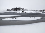 Snow Saucers Loch Ba, Rannoch Moor, Glencoe, Scotland, thick, blanket, snow, ice, slushy, featureless, colourless, trees photo