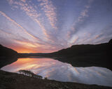 Spider, Loch Lurgainn, Inverpolly, Scotland, sunrise, dramatic, silhouetted, birch, tree, reflected, hills, celestial   photo