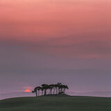 Strawberry Fields Forever, Nairn, Highlands, Scotland, late, summer, sunset, sun, fading, diluted, sea, haar, green, pas photo