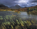 Summer Squall Sligachan, Sligachan, Skye, Scotland, Marsco, torrential, midges, sunshine, light, blue, sky, sedges, illu photo