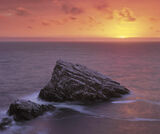 Sunrise At Birdshit Rock, Portknockie, Moray, Scotland, summers, morning, sun, golden, cormorants, guano, rock, scale photo