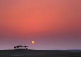 Tangerine, dream, Nairn, Highlands, Scotland, summer, trees, sun, fields photo