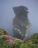Terra Firma, Duncansby, Caithness, Scotland, edge, cliff, breathtaking, views, sea stacks, rock arches, thrift, sea pink photo