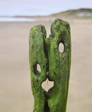 The Scream, Sandsend, North Yorkshire, England, fantastic, seaweed, groyne, Edvard Munch, artist, haunting, apocalyptic, photo