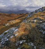 Torridonian Bluff, Diabaig, Torridon, Scotland, autumn, deer grass, fire grass, vivid, red, hillsides, Torridon, hue, cl photo