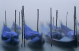 Venetian Rock, St Marks Square,  Venice, Italy, misty, October, dawn, gondolas, boats, blue, posts, blur, still, visibil photo