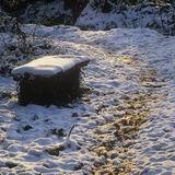 Well Trodden Path, Keston Ponds, Kent, England, snow, transformed, path, walkers, worn, fresh, winter, intimate, atmosph photo
