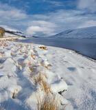 White Gold, Loch a Chroisg, Achnasheen, Scotland, Arctic, gold, palette, blue, winter, afternoon, Torridon, mountains photo