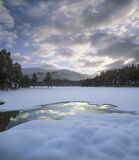 Winter Curtain, Loch An Eilein, Cairngorm, Scotland, exciting, thick, snow, trees, transforming, clouds, magnificent, go photo