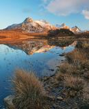 Winter Gold Loch Hakel