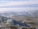 Winter Mist Dava, Dava Moor, Moray, Scotland, lofty, viewpoint, Carr Bridge, Cairngorms, abandoned, bothy, mist, frost photo