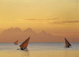 Zanzibar Sailing, West Coast, Zanzibar, Africa, paradise, soft, golden, light, sunset, triangles, sail, dhows, fishing  photo