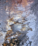 Winter Brook, Edinkillie, Moray, Scotland, brook, stream, river, snow, viaduct, coated, frozen, pink, dawn, birch, white photo