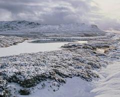 Arctic Dava