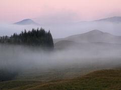 Autumn Mist Tulla