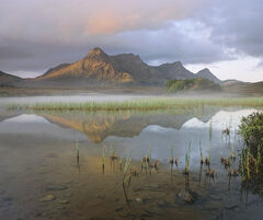 Awakening Ben Loyal, Loch Hakel, Sutherland, Scotland, serene, chill, reed, mist, veil, peak, loch, performance, atmosph