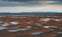 Blood red sunlight painted the raised sand pillows at Findhorn bay on the Moray coast.