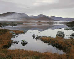 Breaking Dawn Rannoch