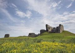 Buttercup Castle