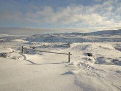 Dava Summit Snow
