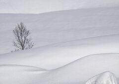 Deep Snow 13