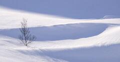 Deep Snow 14