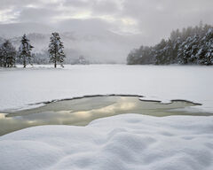 Deep Winter, Loch An Eilein, Cairngorm, Scotland, deep, unblemished, snow, dimpled, ambient, soft, overcast, sky, castle