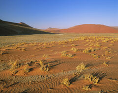 Desert Floor, Sossusvlei, Namibia, Africa, rainbow, colours, orange, sand, blue, sky, angled sunlight, sunlight, virtuos