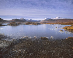 Diamond Dusted Rannoch