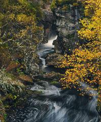 Dog Falls Bubble Trails, Glen Affric, Highlands, Scotland, river, gorge, cataracts, bubble, peat, black, autumn, overloo