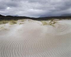 Dune Spirals