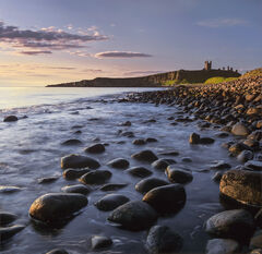 Dunstanburgh sunrise, Dunstanburgh, Northumbria, England, Northumberland, east coast, golden, reflected, green, ruin, ca