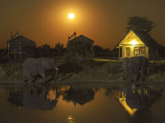 Elephant Sands Moonrise, Elephant Sands, Botswana, Africa, elephant, 3200 ISO, exposure, moon, stationary, waterhole, pe
