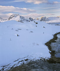 Fractured Selfjord