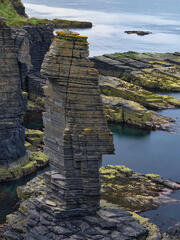 A pancake geode looks like a chess piece on a giant sized chess board near Castle Sinclair and Girnigoe at Noss Head on the Caithness coast.