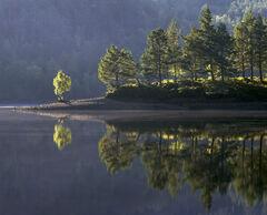 Glen Affric Mirror